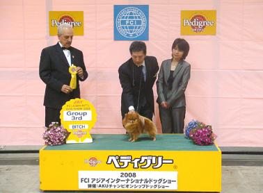 アジアインターナショナルドッグショー in 東京ビッグサイト(2008.3.29)